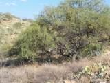 13297 Blackhorse Trail - Photo 14