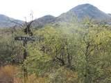 13297 Blackhorse Trail - Photo 15