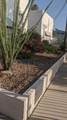 1776 Palo Verde Avenue - Photo 3