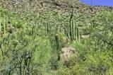4550 Cush Canyon Loop - Photo 10