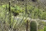 4550 Cush Canyon Loop - Photo 11