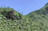 4550 Cush Canyon Loop - Photo 13
