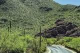 4550 Cush Canyon Loop - Photo 14