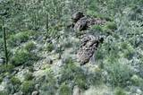 4550 Cush Canyon Loop - Photo 16