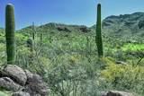 4550 Cush Canyon Loop - Photo 3