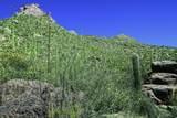 4550 Cush Canyon Loop - Photo 4