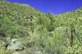 4550 Cush Canyon Loop - Photo 6