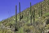 4550 Cush Canyon Loop - Photo 8