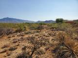 9485 Old Soldier Trail - Photo 15
