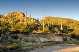 6412 Desert Wind Circle - Photo 3