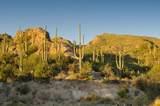 6412 Desert Wind Circle - Photo 4