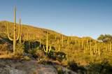 6412 Desert Wind Circle - Photo 7