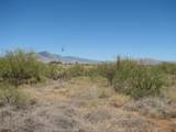 Lot 798 Cactus Blossom Drive - Photo 2
