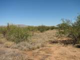 Lot 798 Cactus Blossom Drive - Photo 3