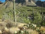 9870 La Reserve Drive - Photo 11