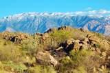 1178 Tortolita Mountain Circle - Photo 10