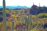 1178 Tortolita Mountain Circle - Photo 11