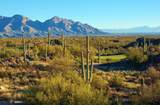 1178 Tortolita Mountain Circle - Photo 14