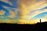 1178 Tortolita Mountain Circle - Photo 18