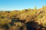 1178 Tortolita Mountain Circle - Photo 9