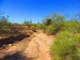 Twin Hawk Trail - Photo 16