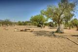 10519 Tanque Verde Road - Photo 40