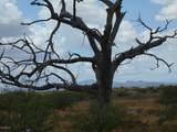 6565 Cotton Tail Trail - Photo 13
