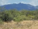 6565 Cotton Tail Trail - Photo 17