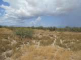 6565 Cotton Tail Trail - Photo 18