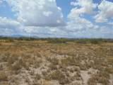 6565 Cotton Tail Trail - Photo 19