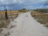 6565 Cotton Tail Trail - Photo 2