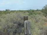 6565 Cotton Tail Trail - Photo 22