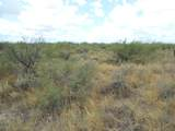 6565 Cotton Tail Trail - Photo 23
