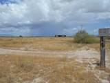 6565 Cotton Tail Trail - Photo 3