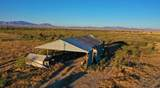 6565 Cotton Tail Trail - Photo 4