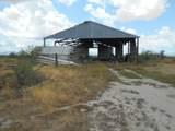 6565 Cotton Tail Trail - Photo 7