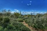 11950 Renoir Way - Photo 40