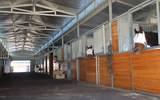 15345 Tumbling L Ranch Place - Photo 2