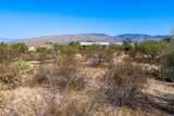 13620 Crazy Horse Trail - Photo 32