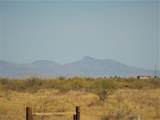 7250 Camino Verde Road - Photo 43