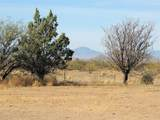 7250 Camino Verde Road - Photo 46