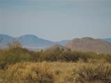 7250 Camino Verde Road - Photo 48