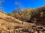TBD Lado De Loma Drive - Photo 43