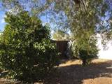 3606 Mango Circle - Photo 11