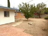 6942 Calle Denebola - Photo 14