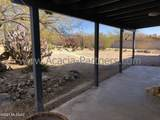 9141 Indian Canyon Road - Photo 13