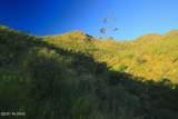 166 Ramada Trail - Photo 11