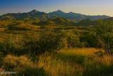 166 Ramada Trail - Photo 12