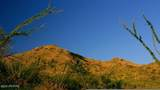 166 Ramada Trail - Photo 15