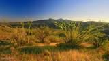 166 Ramada Trail - Photo 16